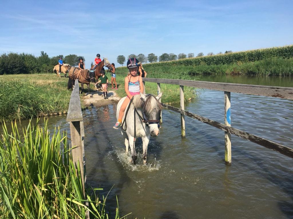 Stal Liza is de coachlocatie voor ik en ik paardencoaching.